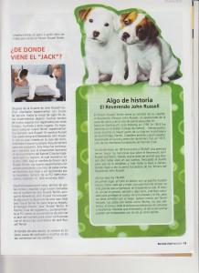 Español chow chow puppies