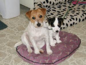 Nina and TaVu